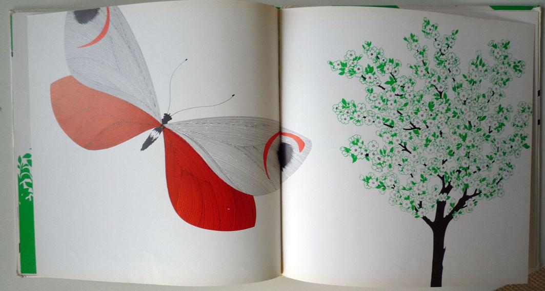 La pomme et le papillon la sardine lire - Pomme papillon ...